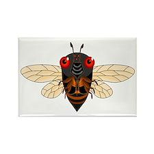 Cute Cartoon Cicada Rectangle Magnet