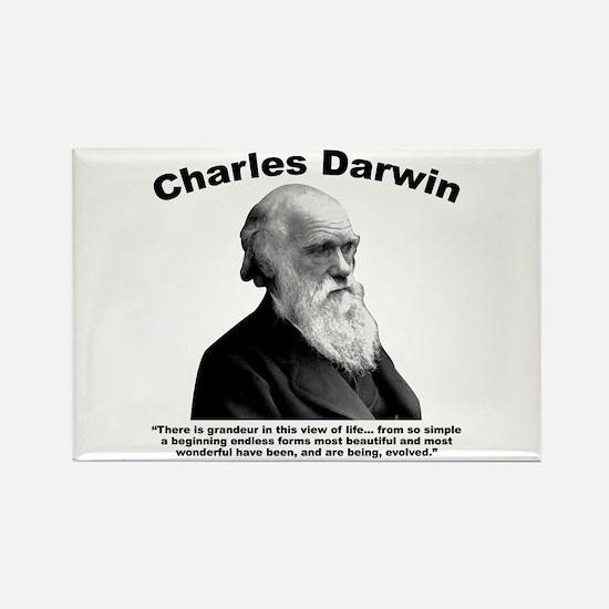 Darwin: Evolved Rectangle Magnet