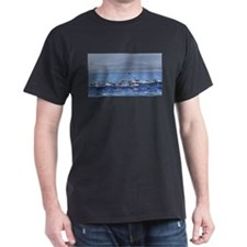 Dolphin Stampede 2 T-Shirt
