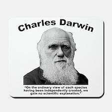 Darwin: Created Mousepad