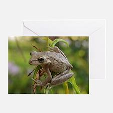 Bug Eyed Greeting Card