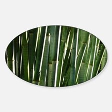 Bamboo Absrtact Decal
