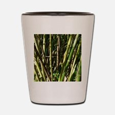 Bamboo Canes Shot Glass