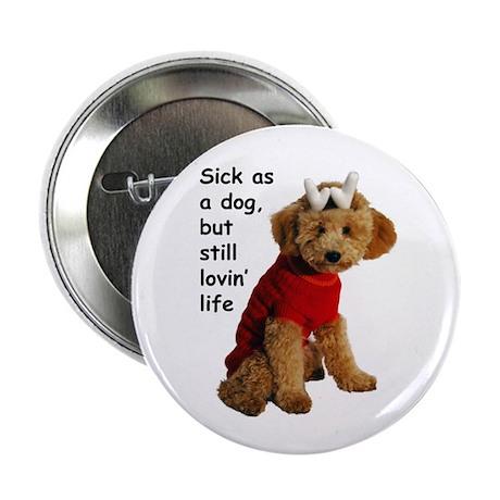 Sick as a Dog Button