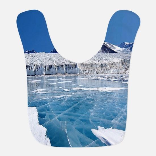 Antarctica Bib