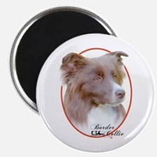 Red Border Collie Cameo Magnet