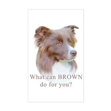 Border Collie BROWN Sticker (Rect.)