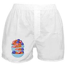 Fruit Bowls Boxer Shorts