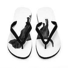 labrador retiever black Flip Flops