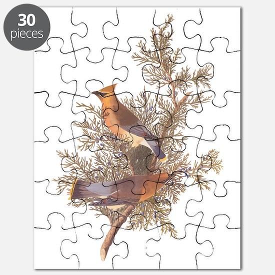 Cedar Waxwing Birds Puzzle