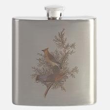 Cedar Waxwing Birds Flask