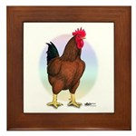 Red Broiler Rooster Framed Tile