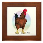 Red Broiler Rooster Framed Tile