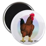 Red Broiler Rooster Magnet