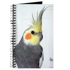 Cockatiel Photo Journal