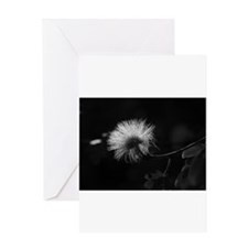 white bloom Greeting Cards
