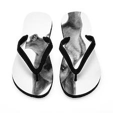 GSD Keyser Flip Flops