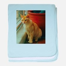 Red Burmese Cat baby blanket
