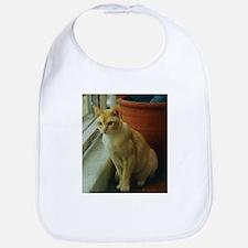 Red Burmese Cat Bib