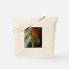 Red Burmese Cat Tote Bag