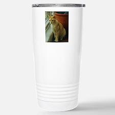 Red Burmese Cat Travel Mug