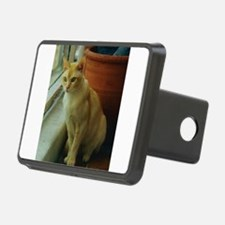 Red Burmese Cat Hitch Cover