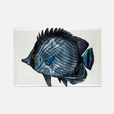 Metallic Blue Tropical Fish Magnets