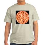Spongy Cap Mushroom 20X Light T-Shirt