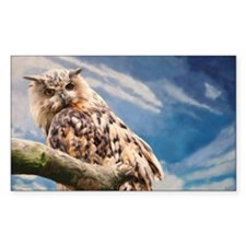 Painting Owl Decal