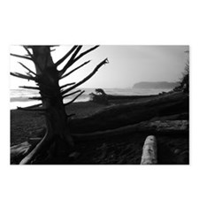 Unique Black and white photography water Postcards (Package of 8)