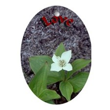 """Bunch Berry """"Love"""" Oval Ornament"""