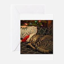 Santa Daisy the Christmas kitty cat Greeting Cards