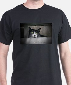 Schubert the cat daydreaming T-Shirt