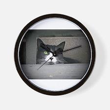 Schubert the cat daydreaming Wall Clock