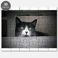 Schubert the cat daydreaming Puzzle