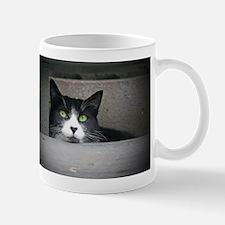 Schubert the cat daydreaming Mugs