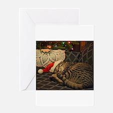 Santa Daisy the cat Greeting Cards