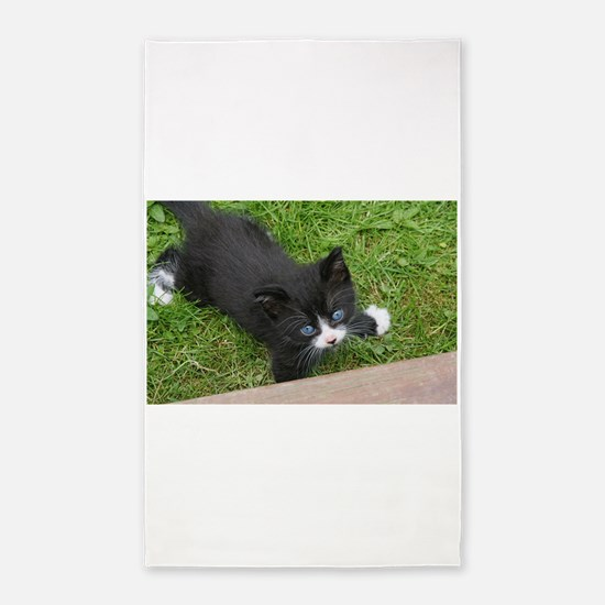 Schubert the playing cat Area Rug