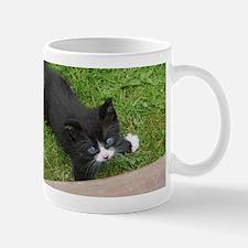 Schubert the playing cat Mugs