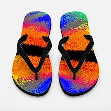 Dreamscape Flip Flops