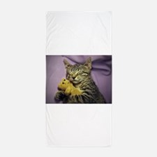 Daisy the sleeping kitty cat with her Beach Towel
