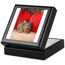 Sweetheart Daisy Valentine kitty cat Keepsake Box