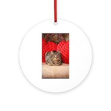 Sweetheart Daisy Valentine kitty Ornament (Round)