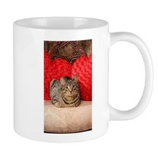 Sweetheart Daisy Valentine kitty cat Mugs