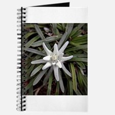 White Alpine Edelweiss Flower Journal