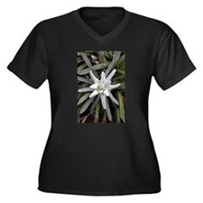 White Alpine Edelweiss Flower Plus Size T-Shirt
