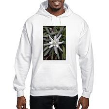 White Alpine Edelweiss Flower Hoodie