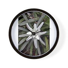 White Alpine Edelweiss Flower Wall Clock