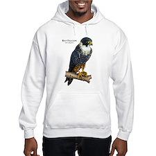 Bat Falcon Hoodie