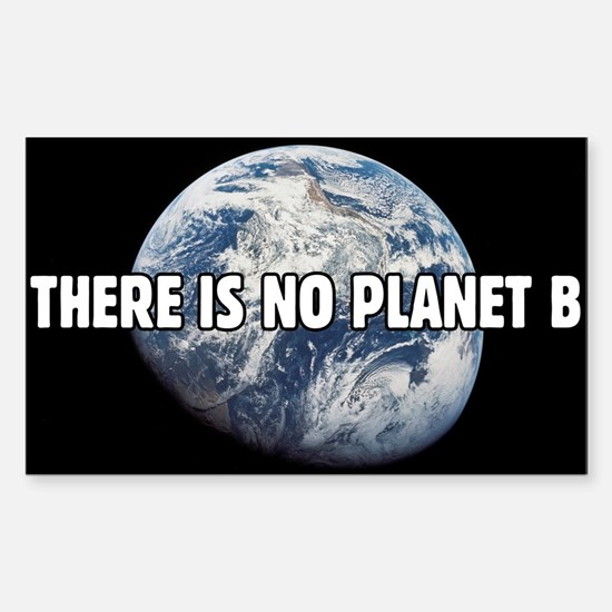 There is no Planet B Decal